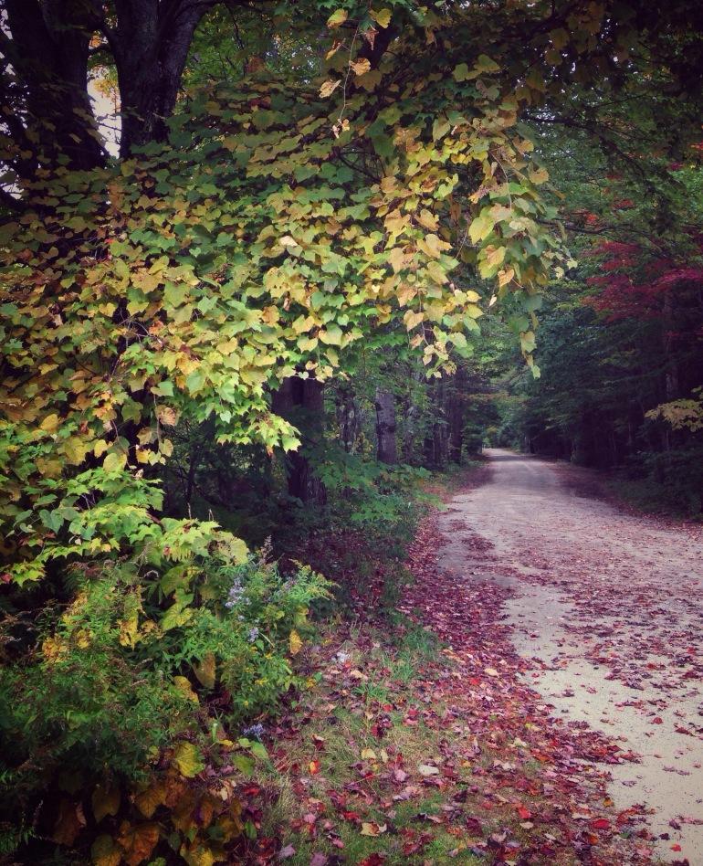 hancock autumn